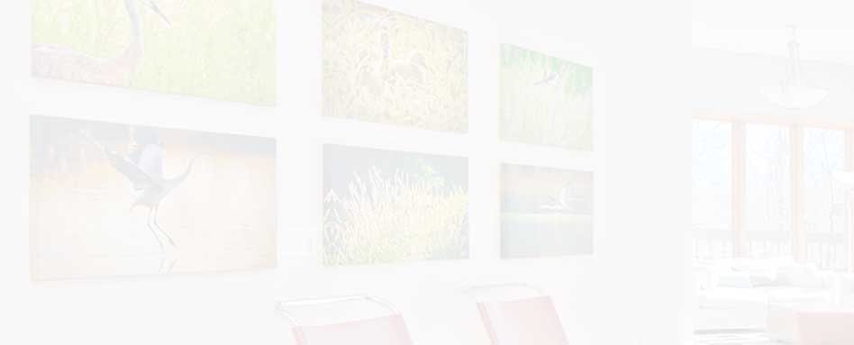 photograph of wall displaying grid of canvas options