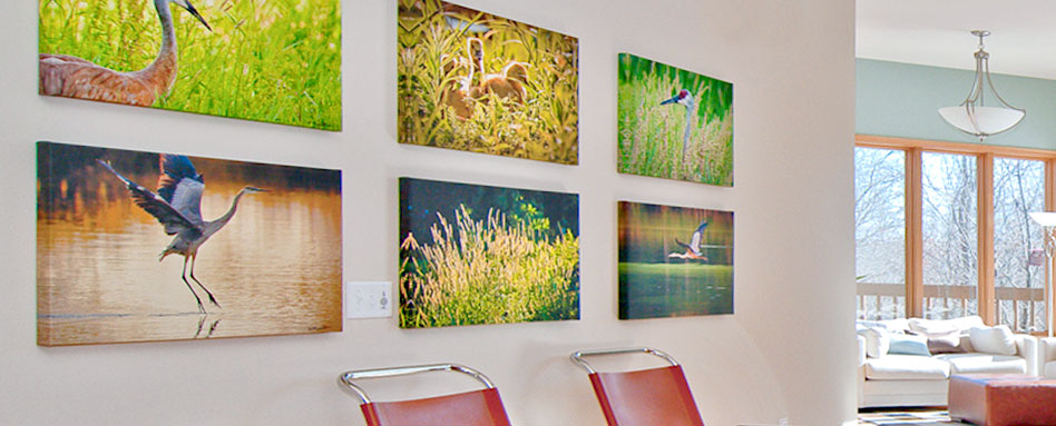 Photograph Of Wall Displaying Grid Canvas Options